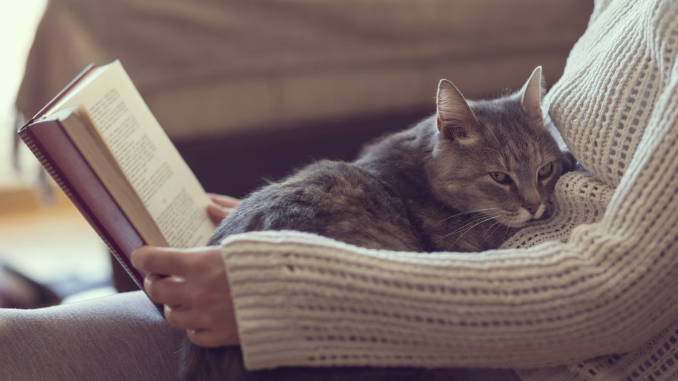 locum tenens close to home - featured image of physician relaxing at home with cat and book