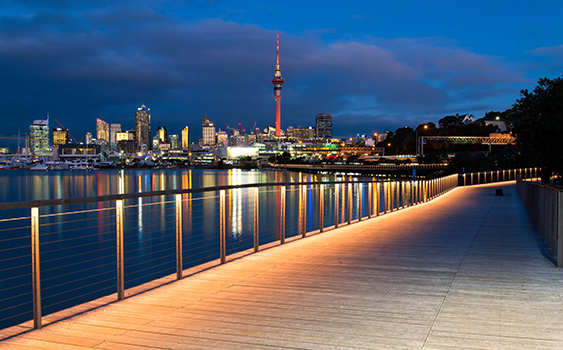 Auckland City - Skytower