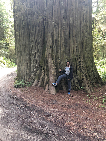 Person in front of large tree